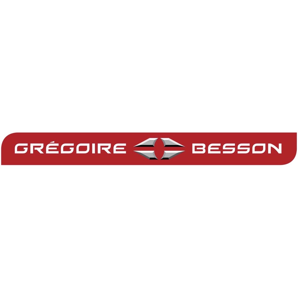 Gregoire Besson 1231314